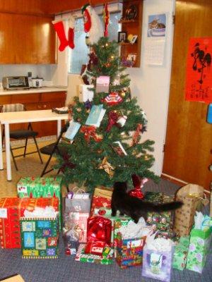 聖誕節早上,可以把禮物都搬出來了