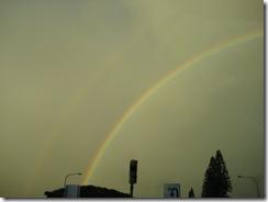 Rainbow 004